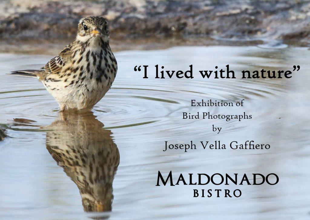 Photo Exhibition by Joseph Vella Gaffiero