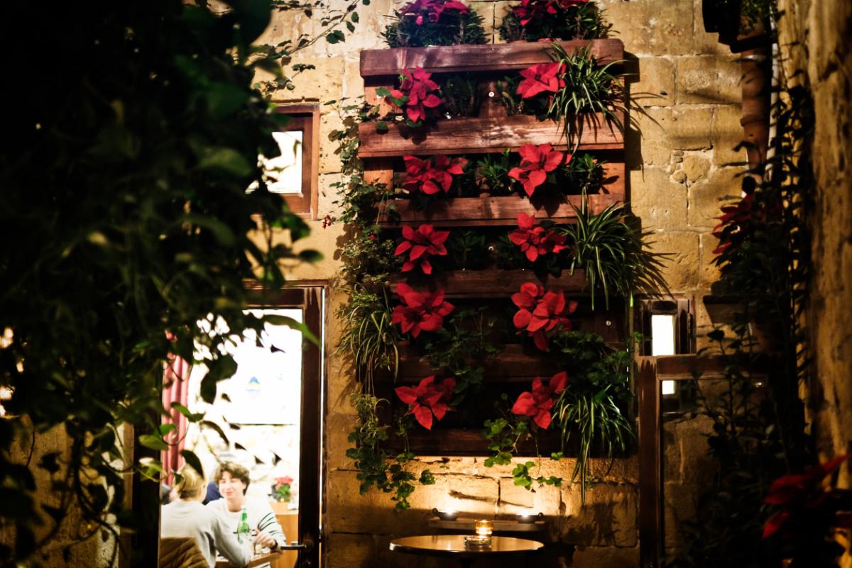Christmas at Maldonado